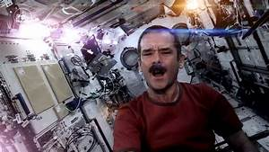 Astronaut Chris Hadfield Bowie As - Pics about space
