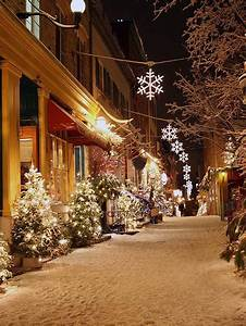 Walkin U0026 39  In A Winter Wonderland Photography Backdrop    080