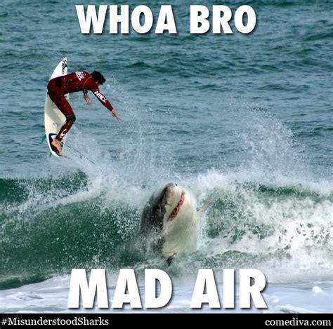 Funny Shark Meme - when it is shark week funny shark gif