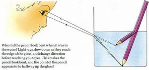 Refraction of Light Experiment for Kids - What is ...