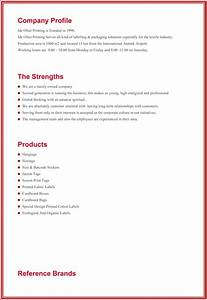 Company profile template for small business bigstackstudios nice small business profile template contemporary for company profile template for small business flashek Images