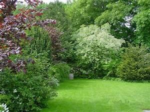 Langsam Wachsende Hecke : frei wachsende hecke mit staudenunterpflanzung in ~ Michelbontemps.com Haus und Dekorationen