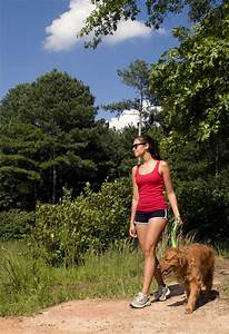 lose weight fast while walking your fitlife