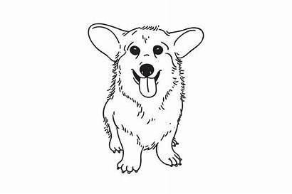 Corgi Puppy Illustration Welsh Piggy Creativemarket
