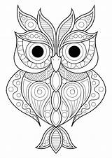 Owl Patterns Coloring Owls Simple Various Different Pages Adult Animals sketch template