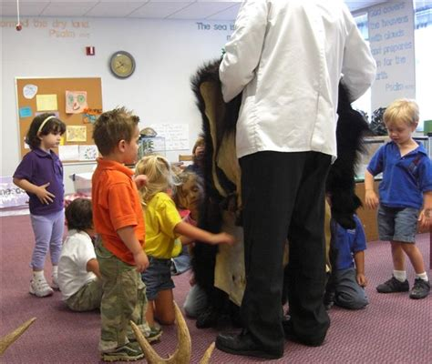 northside christian pre school creation critters 777 | Looking at the black bear skin