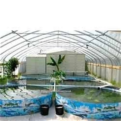 fish farm house open fish farm house retailer  delhi