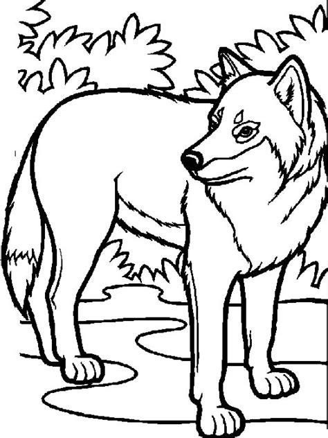 coloriage loups des coloriages d animaux et de loups
