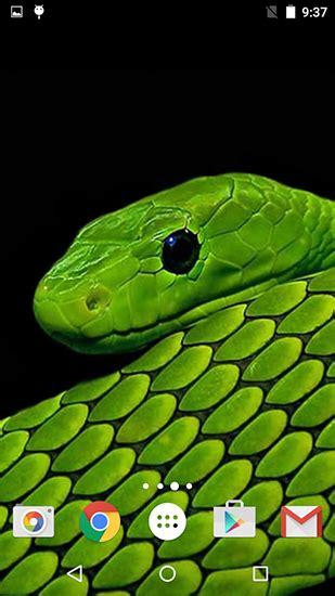 descargar snakes  fun  wallpapers  android