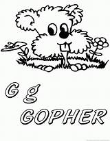 Gopher sketch template