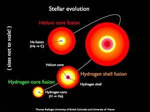 NASA's Kepler Mission Helps Reveal the Inner Secrets of ...