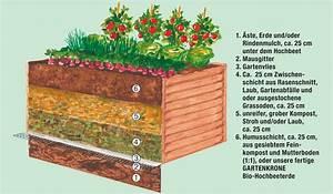 Aufbau Eines Hochbeetes : mr gardener hochbeet l rche b 120 x t 40 x h 80 cm pflanzhilfen derbaumarktshop der ~ A.2002-acura-tl-radio.info Haus und Dekorationen