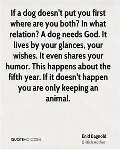 quotes about your dog d