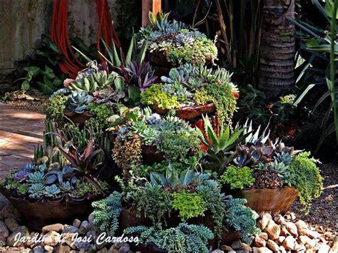 cascading succulent plants 363 best images about succulents on pinterest