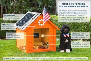 white house addresses climate change first dog bo uses With solar powered dog house