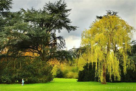 Japanischer Garten Events by Japanischer Garten Nordpark D 252 Sseldorf Wiebke Rost