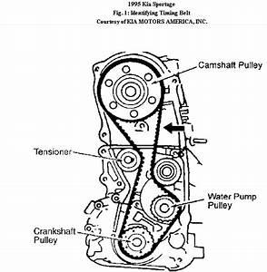 Kia Sportage Timing Mark Diagram : how to set the timing on a 1995 kia sportage soch ~ A.2002-acura-tl-radio.info Haus und Dekorationen