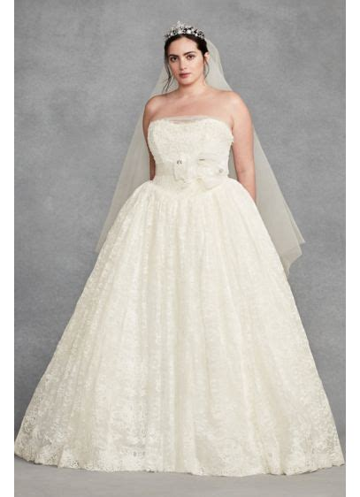 White By Vera Wang Plus Size Corded Wedding Dress David