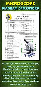 Microscope Crossword With Diagram  Editable