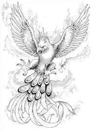 realistic phoenix bird drawings - Google Search   Adult Coloring Book   Pinterest   Phoenix bird