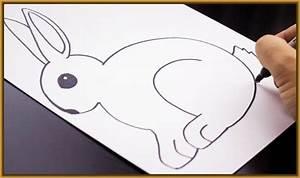 imagenes de conejos faciles de dibujar Archivos Imagenes de Conejos
