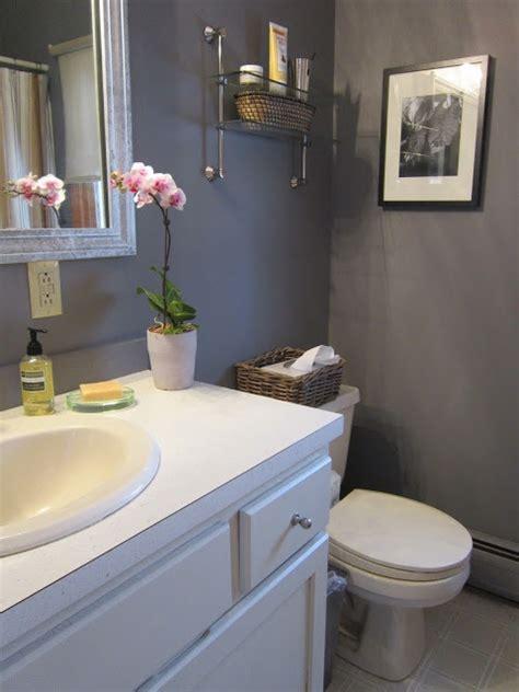 Bathroom Decor Colors by Cinder Benjamin Paint Colors