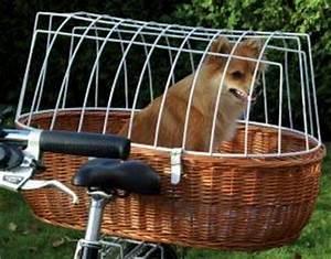 Fahrradkorb Hund Hinten : fahrradkorb f r den hund freizeit fahrrad franz sische ~ Kayakingforconservation.com Haus und Dekorationen