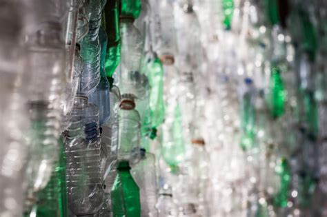 mind blowing ways  upcycle plastic bottles  home
