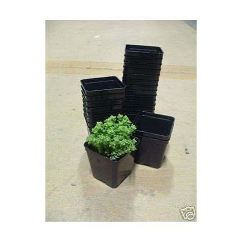 vasi in plastica per piante prezzi arca kit 15 vasi cm 10x10 art120 fioriere vasi balcone