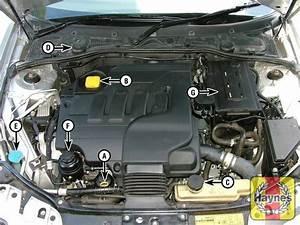 Rover 75  1999 - 2005  2 0 - Fluid Level Checks