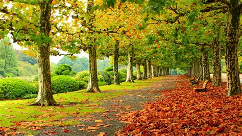 Autumn Images Autumn Scenery Wallpapers Pictures Images