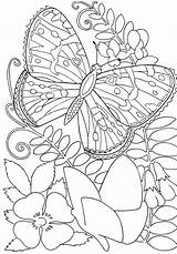 Coloring Butterfly Insect Awesome Sky sketch template