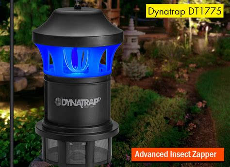 Best Mosquito Repellent For Your Yard