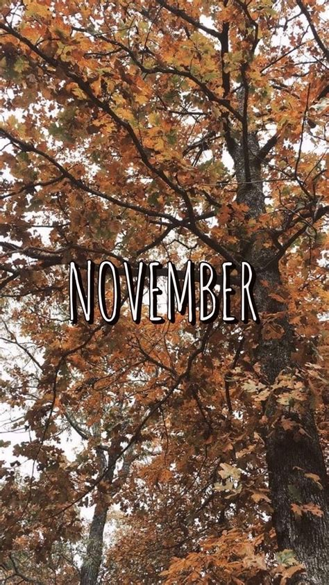 Background Aesthetic Thanksgiving Wallpaper by November Aesthetic Wallpapers Top Free November