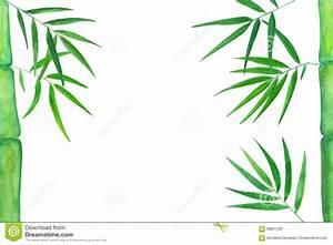 Green Bamboo Leaves Watercolor Illustration  Handdrawn Zen Background  Stock Illustration
