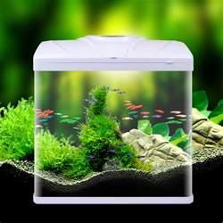 small aquarium fish tank aquarium design ideas