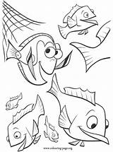 Dory Coloring Nemo Finding Grouper Breaking Movie sketch template
