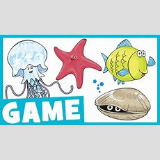 Learn Sea Animals For Kids  What Is It? Game For Kids  Maple Leaf Learning Youtube