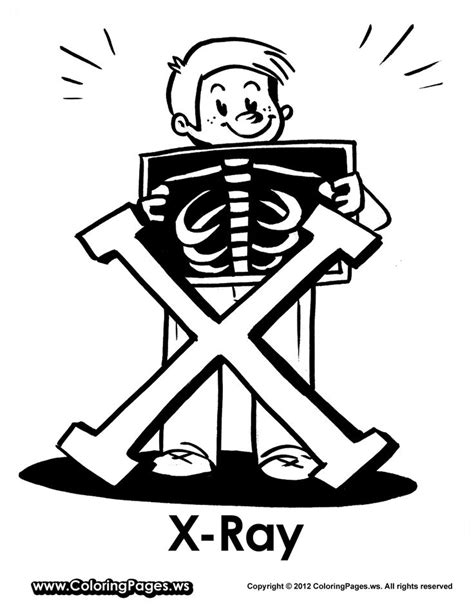 xray coloring page google search office pinterest