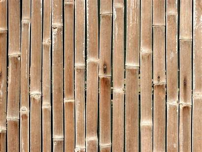 Bamboo Wall Wallpapers Walls Tag Wallpapersafari