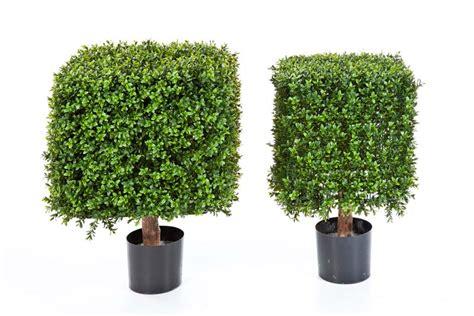 Sichtschutz Garten Aldi by Sichtschutz Efeu Aldi Gardenline Sichtschutz K Nstliche