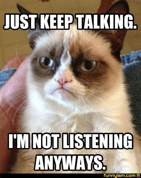 Not Listening Meme - just keep talking i m not listening anyways meme factory funnyism funny pictures