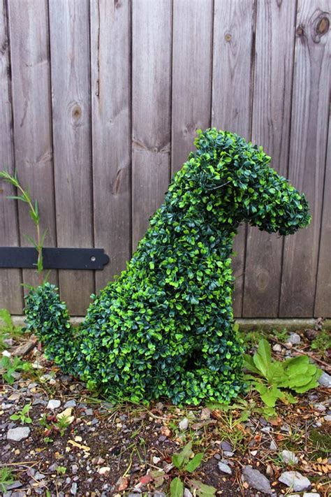 Topiary Animals  Agrumi New Forest Bespoke Topiary
