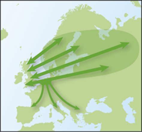 thrush migration bto british trust for ornithology