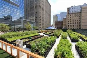 Urban Gardening Definition : food industry news is urban farming good for the environment ~ Eleganceandgraceweddings.com Haus und Dekorationen