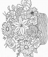 Coloring Adult Flowers sketch template