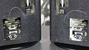 Stereo Design Magnepan Mini