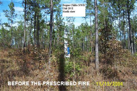 southeast louisiana refuges fire management page