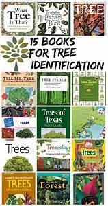 50 Inspiring Books To Make Arbor Day Celebrations Fun