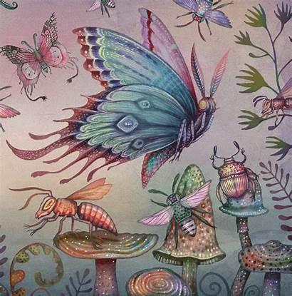 Lenticular Moths Illustrations Piccalilli Magical Restaurant Illuminate